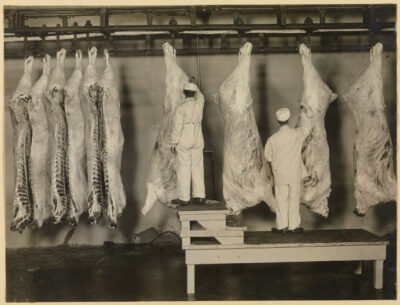 Government inspectors examine carcasses at a meatpacking establishment in Omaha, Nebraska, 1910.
