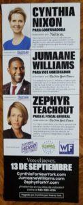 Cynthia Nixon, Jumaane Williams, Zephyr Teachout
